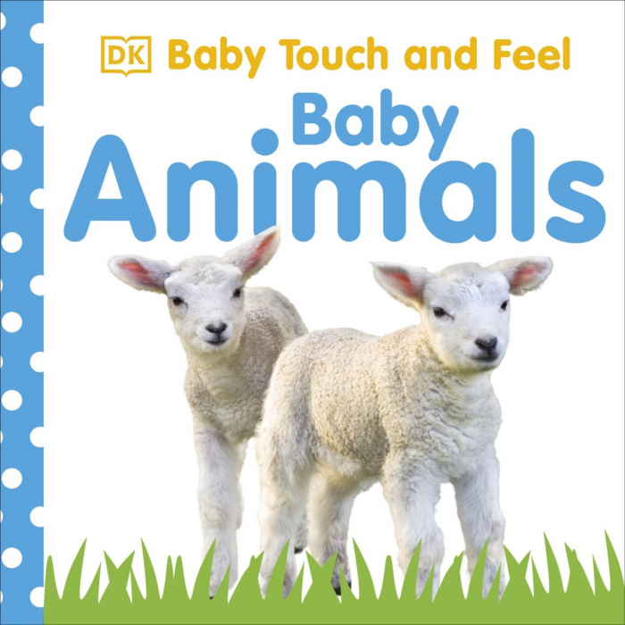 Baby Touch and Feel Baby Animals 0