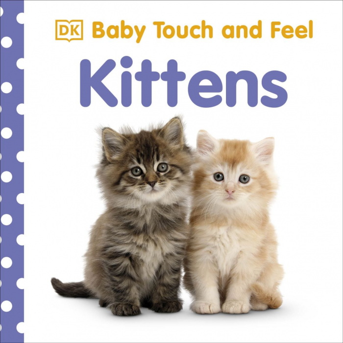 Baby Touch and Feel Kittens 0