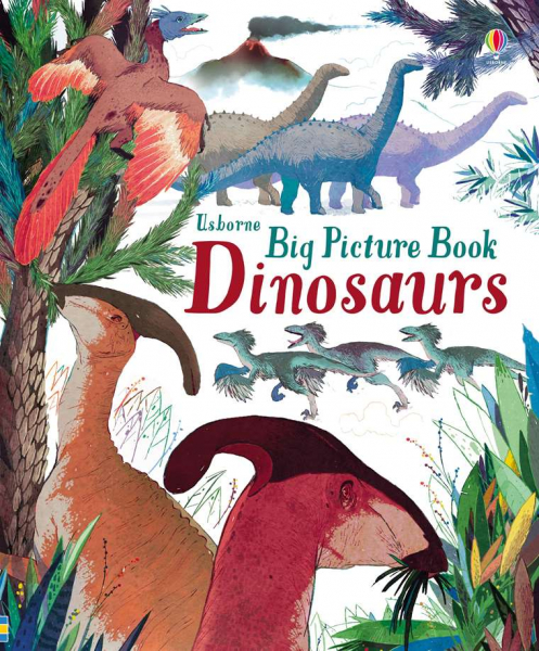 Big Picture Book Dinosaurs 0