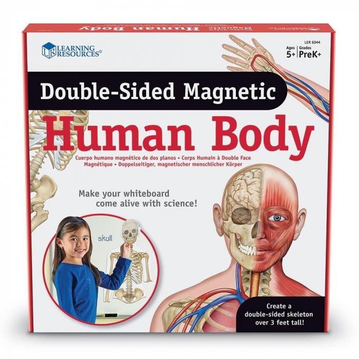 Corpul uman - set magnetic [0]