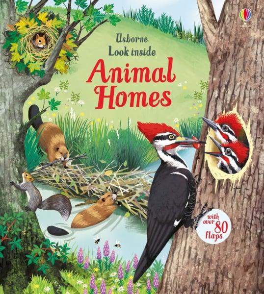 Pachet Look inside animal homes si Nature Explorers 0