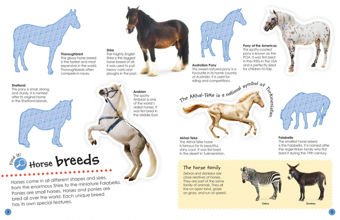 Horses and Ponies Ultimate Sticker Book 1