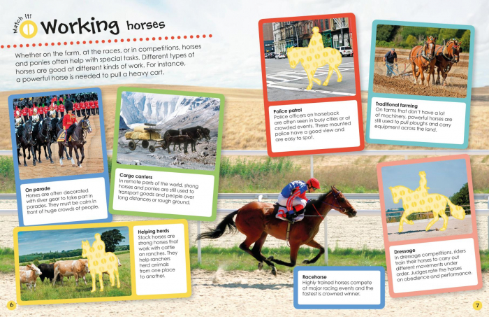 Horses and Ponies Ultimate Sticker Book 2
