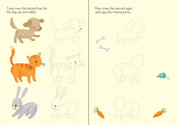 animals wipe clean 2