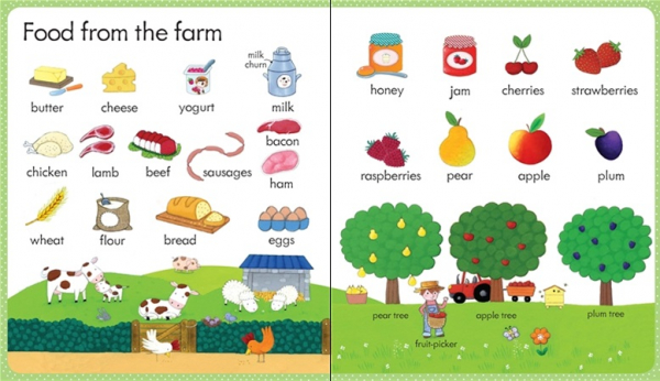 my firts word book on the farm 2