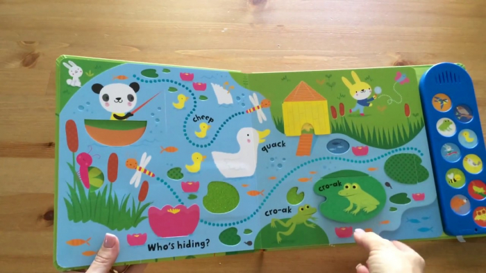 Baby's very first nature sounds playbook 1