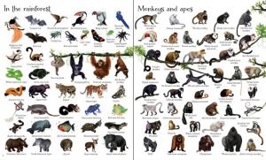 1000 animals [2]