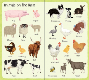 199 things on the farm [2]