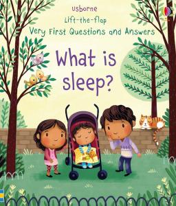 What Is Sleep?0