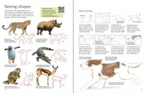 Drawing Animals2