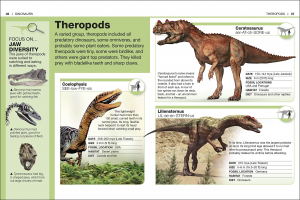 Pocket Eyewitness Dinosaurs1