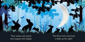 Good Night baby Moon- carte cu lumină de veghe [1]