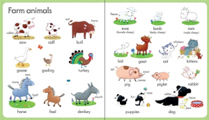 My first word book: On the farm1