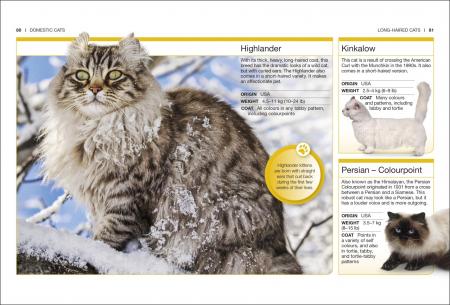 Pocket Eyewitness Cats2