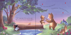 The twinkly, twinkly bedtime book1