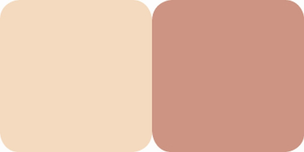 Fard Obraz & Pudra Iluminatoare Duo Highlighter Color Focus Quiz - 020 - PlusBeauty.ro 1