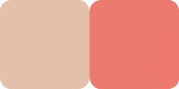 Fard Obraz & Pudra Iluminatoare Duo Highlighter Color Focus Quiz - 050 - PlusBeauty.ro 1