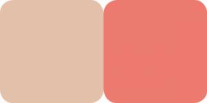 Fard Obraz & Pudra Iluminatoare Duo Highlighter Color Focus Quiz - 0501