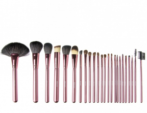 Set 24 Pensule Profesionale din Par Natural Megaga + Borseta Cadou1