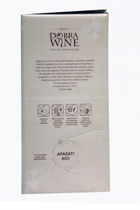 Vin Alb Demisec - Bag in box 9L 1