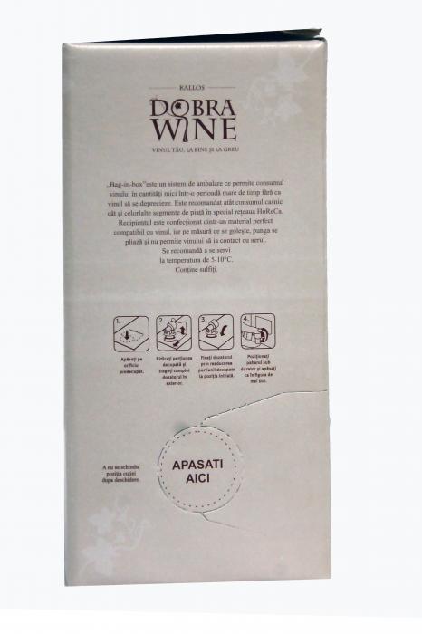 Vin Alb Demisec - Bag in box 9L 1
