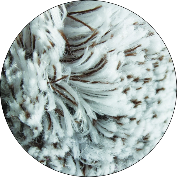 Manusa Premium E-Cloth din Microfibra pentru Ingrijire si Masaj Cani si Pisici, 23.5 x 17 cm 4