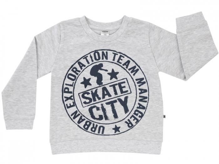 Bluza trening,gri,imprimeu skate_Basic Line Boys 0