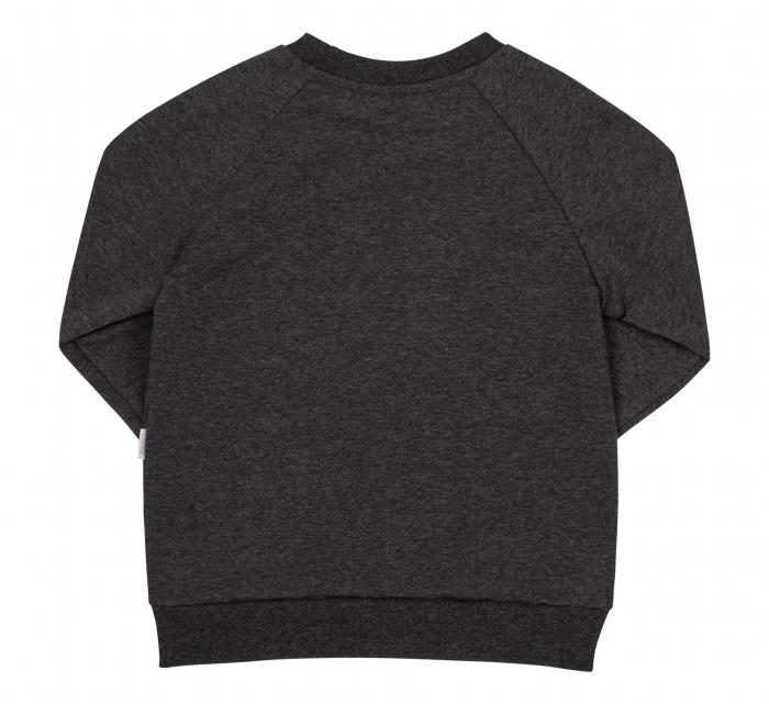 Bluza cu maneca lunga, fete, Gri inchis, Lama 1