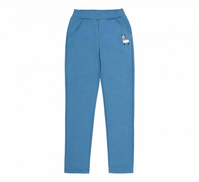 Pantalon trening cu buzunare, fete, Albastru/Lama 0