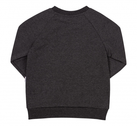 Bluza cu maneca lunga, fete, Gri inchis, Lama1