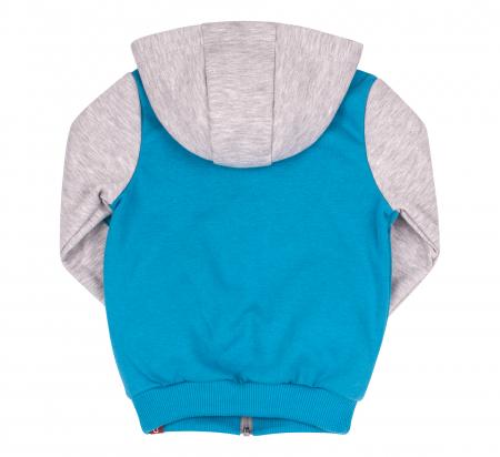 Bluza trening cu gluga si fermoar, baieti, Albastru/Gri, Cool Driver1