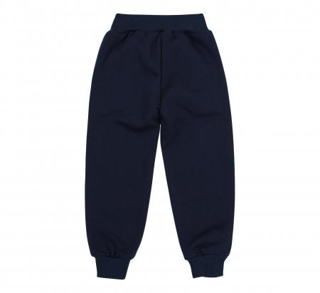 Pantalon trening cu buzunare, baieti, Albastru/Labute [1]
