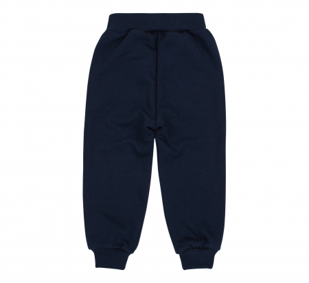 Pantalon trening cu buzunare, baieti, Albastru/Dunga gri1