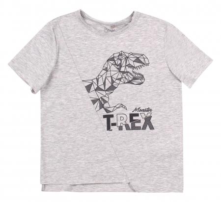 Tricou cu maneca scurta, baieti, Gri deschis/T-rex [0]