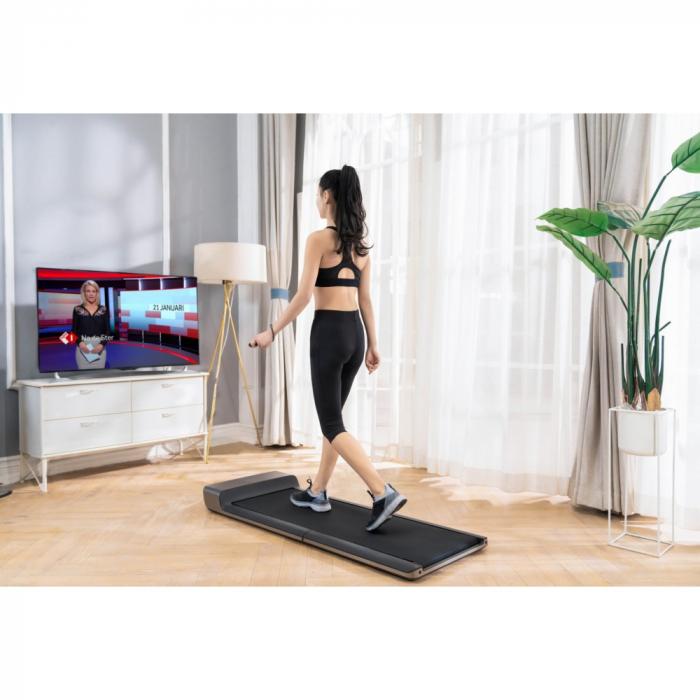 Walking Pad Flow Fitness DTM100i [0]