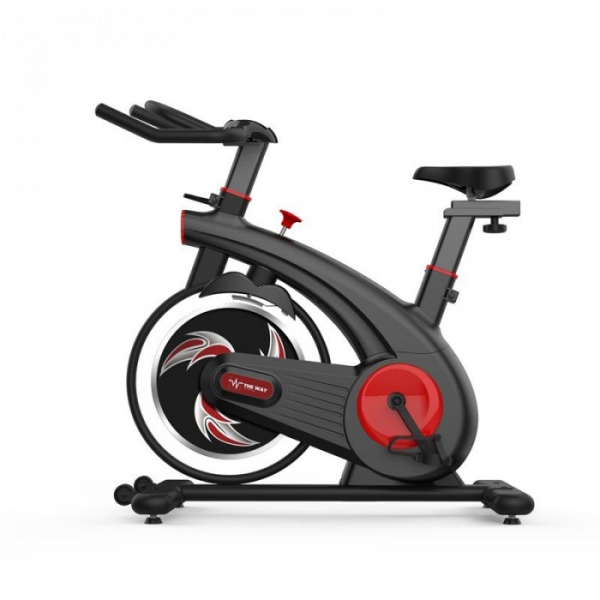 Bicicleta spinning Indoor Cycling The Way Fitness ES200, Volanta 8 kg [0]