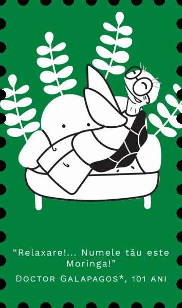 Moringa ecologica din Israel (500mg) 120 comprimate - Republica BIO 120 comprimate 1