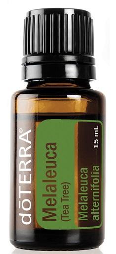 Ulei esential de Melaleuca (Tea Tree) 5 ml doTerra 0