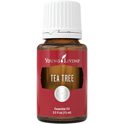 Ulei esential Tea Tree (Melaleuca) 5 ml Young Living