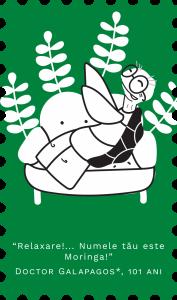 Moringa ecologica din Israel (500mg) 120 comprimate - Republica BIO 120 comprimate1