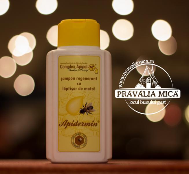 Sampon regenerat cu laptisor de matca 250m - Complex apicoll 0