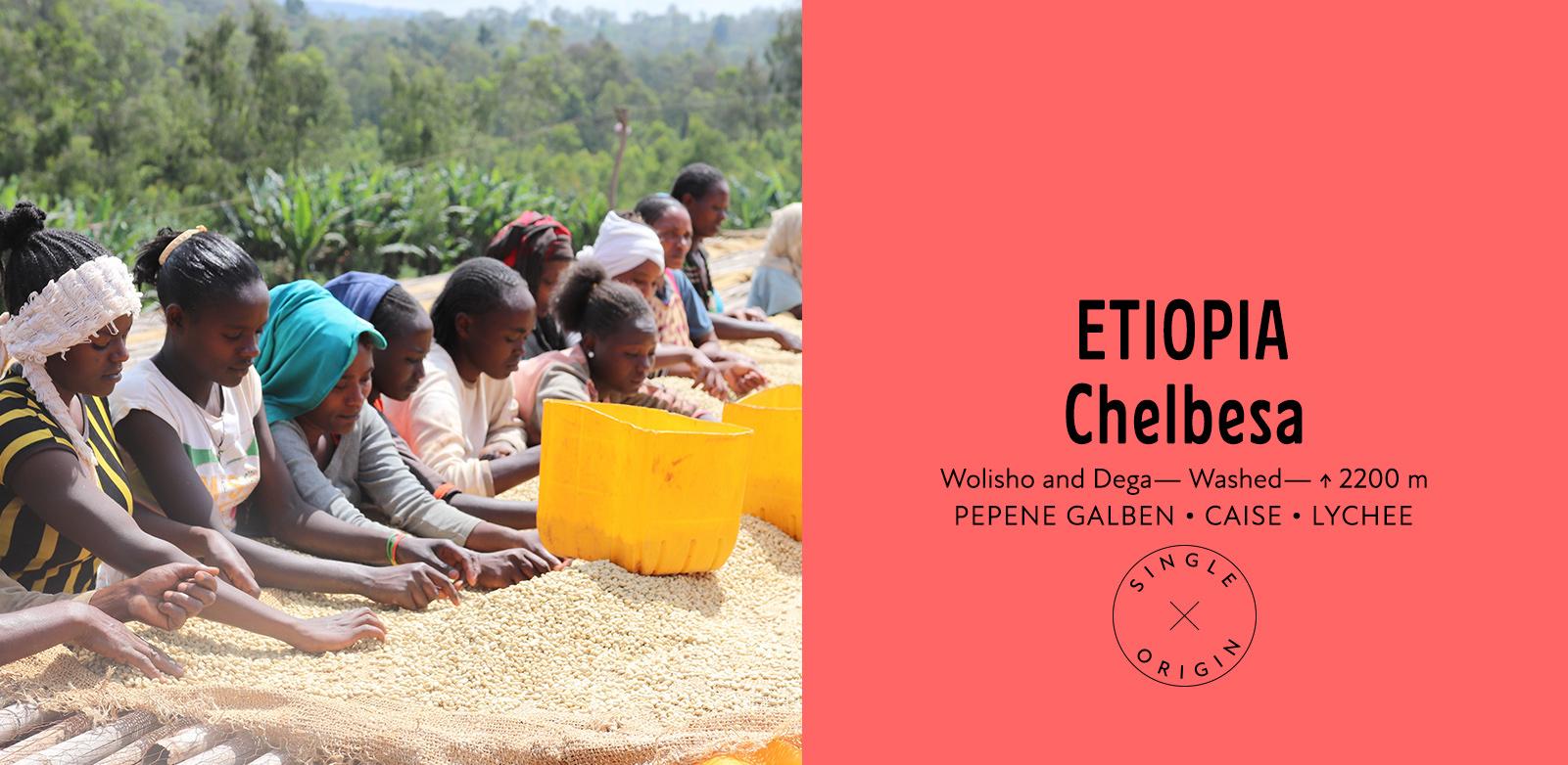 Ethiopia Chelbesa