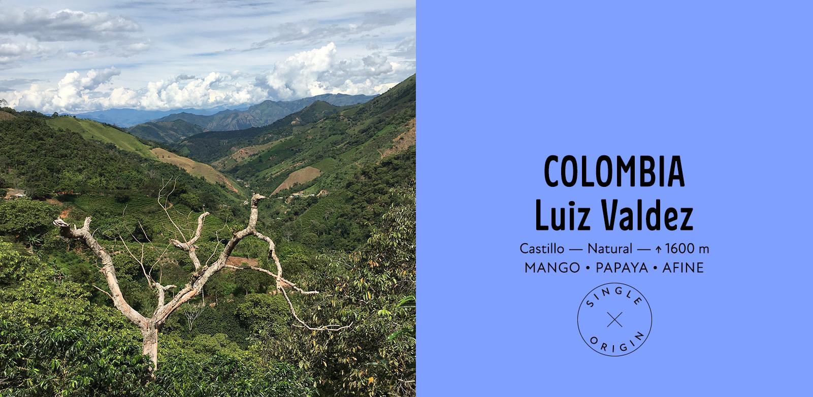 Colombia Luiz Valdez