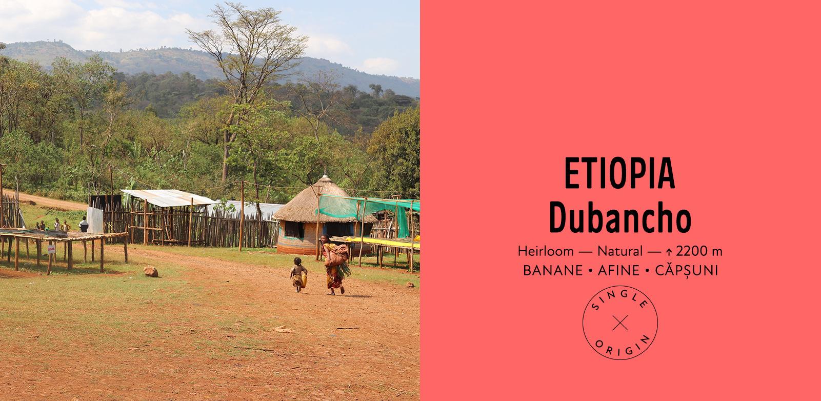 Etiopia Dubancho