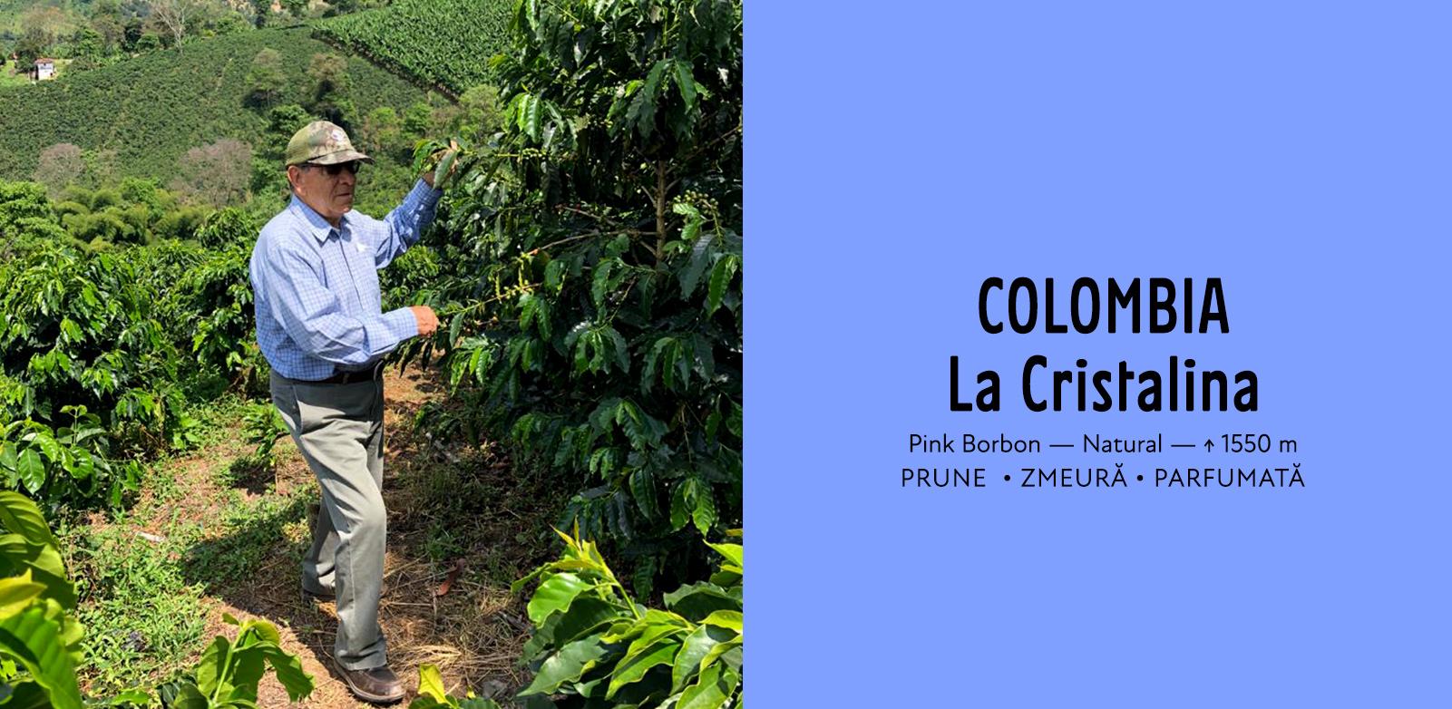 Colombia La Cristalina