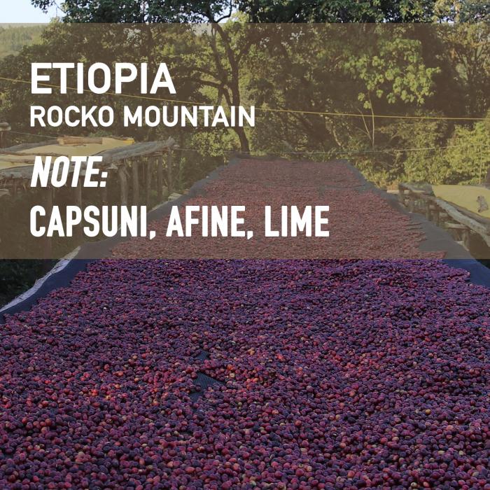 Etiopia - Rocko Mountain, Cafea de Specialitate 0