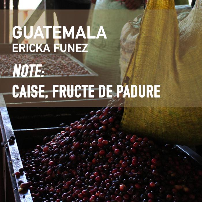 Guatemala Ericka Funez, Cafea de Specialitate 0