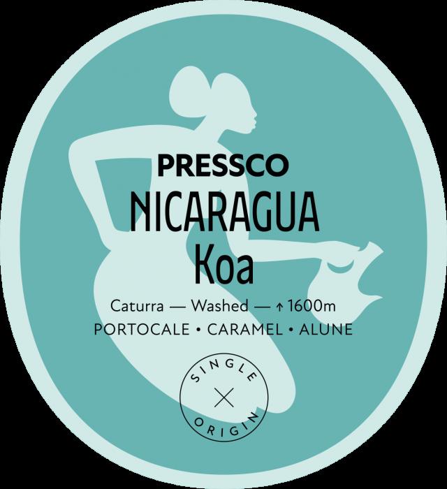 Nicaragua Koa [0]
