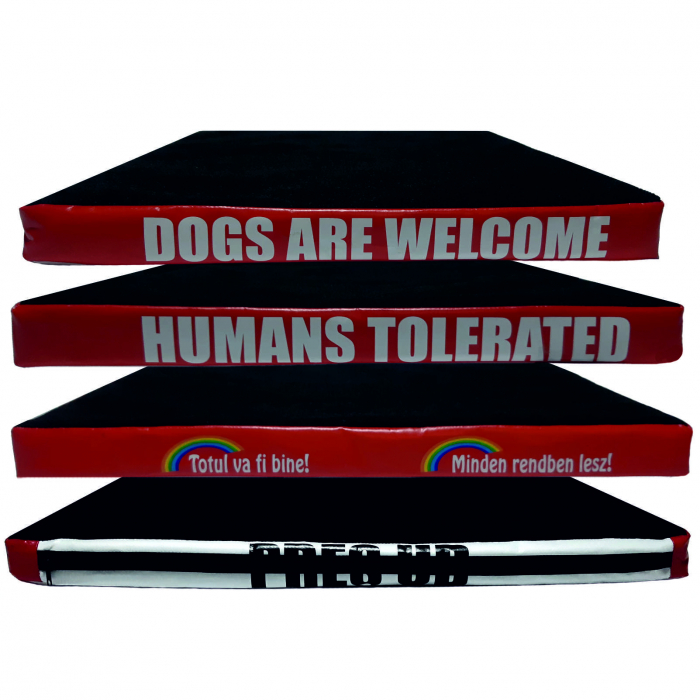 Pres UD-Dogs... [0]