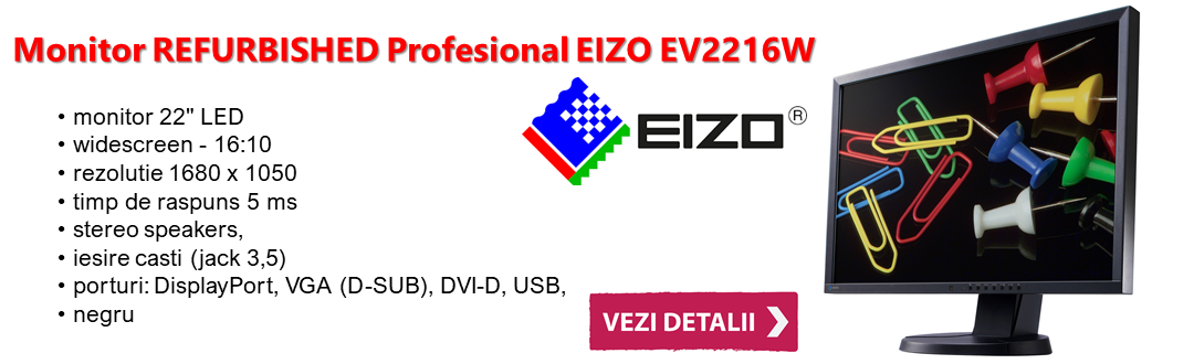 "Monitor Eizo 22"""